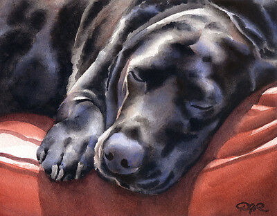 BLACK LAB SLEEPING DJR DOG PAINTING PRINT POSTER WALL ART ROOM HOME DECOR RETRO