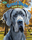 Great Dane: Gentle Giant by Stephen Person (Hardback, 2011)