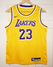 Lebron James #23 Los Angeles Lakers Icon Edition Nike NBA Women's ...