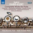 Karg-Elert: Complete Works for Flute (CD, Apr-2014, 2 Discs, Naxos (Distributor))
