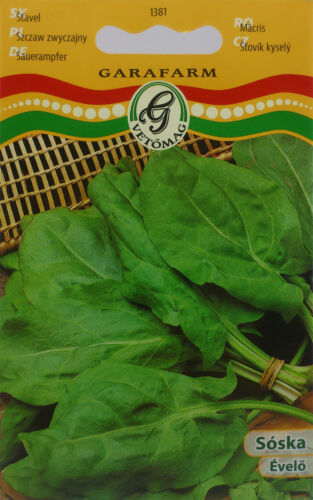 Soska Hungarian Sorrel seeds perennial good for soskafozelek approx 800 seeds