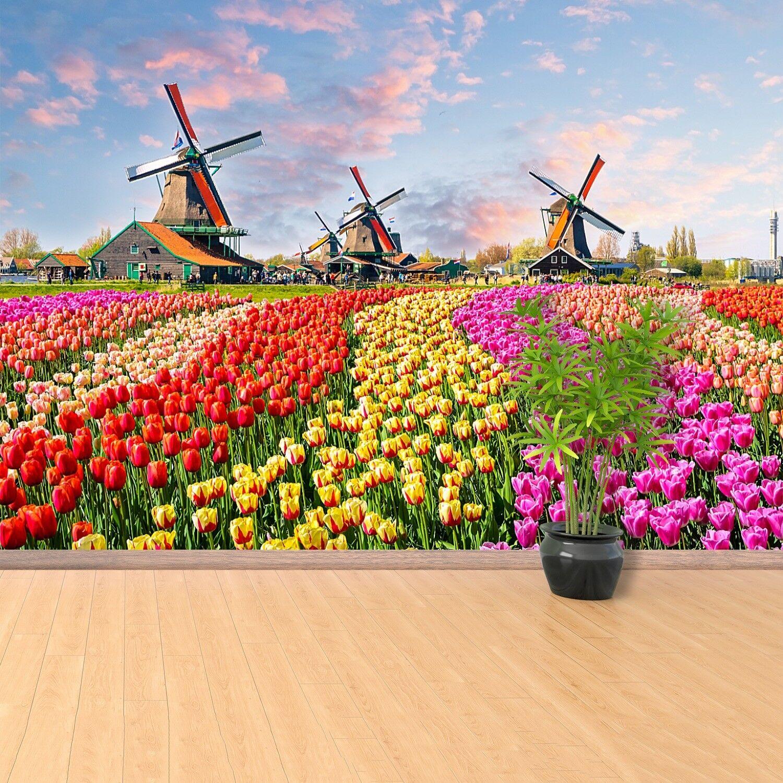 Fototapete Selbstklebend Einfach ablösbar Mehrfach klebbar Tulpen Windmühlen