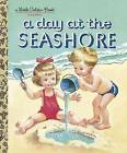A Day at the Seashore by Kathryn Jackson (Hardback, 2010)