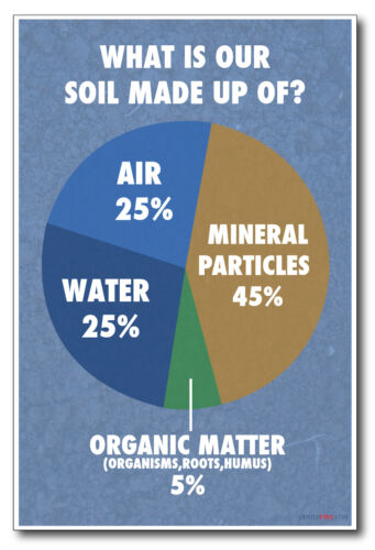 NEW Classroom Biology Science Poster What Is Our Soil Made Of