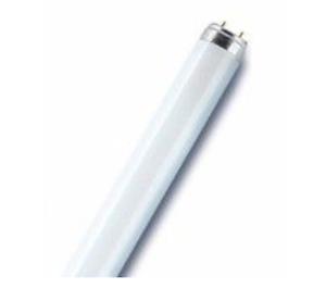 OSRAM-L18840-LAMPADA-FLUORESCENTE-LINEARE-18W-21-G13