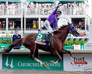 CALIFORNIA CHROME 2014 KENTUCKY DERBY WINNER HORSE RACE RACING 16x20 PHOTO