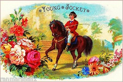 Young Jockey Horse Race Vintage Cigar Tobacco Box Crate Inner Label Art Print