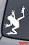 FROG-Vinyl-Decal-Sticker-Car-Window-Wall-Bumper-Tree-Amphibian-Funny-Cute-Animal miniature 1