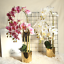 thumbnail 1 - Beautiful-Artificial-Phalaenopsis-Orchid-Flower-Bunch-of-2-White-Pink-Purple