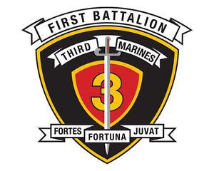 1-Batalhao-3-Regimento-De-Fuzileiros-Navais-3-5-Polegadas-USMC-FUZILEIRO-Corp-Decalque-Novo