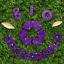 Hemway-Eco-Friendly-Craft-Glitter-Biodegradable-1-40-034-100g thumbnail 223