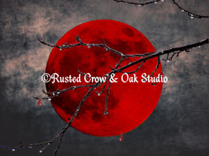 Details About Modern Blood Red Moon Thorn Branch Gothic Home Decor Matted Picture Usa A175