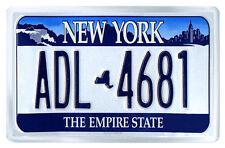 NEW YORK USA LICENSE PLATE FRIDGE MAGNET SOUVENIR IMAN NEVERA