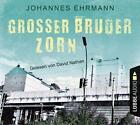 Großer Bruder Zorn von Johannes Ehrmann (2016)