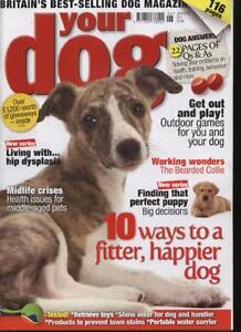 YOUR-DOG-MAGAZINE-June-2010