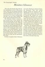 "The Miniature Schnauzer - Vintage Dog Art Print - Matted ""G"""