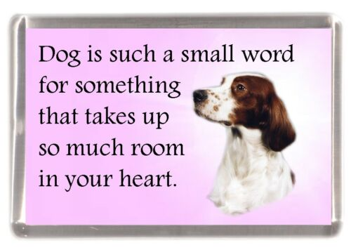 "Irish Red /& White Setter Dog Fridge Magnet /""Dog is such a small word...../"""
