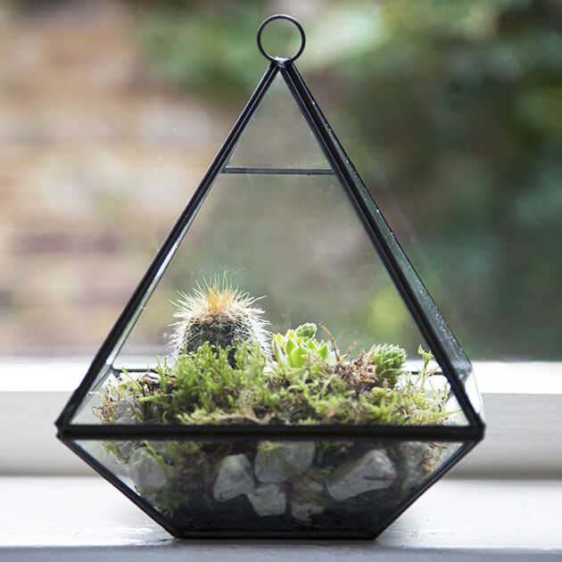 Glass Pyramid Shaped Terrarium Candle Holder Lantern Glasshouse Planter