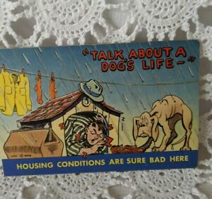 Post-Card-Vintage-Comical-Humor-Funny-UnPosted-Talk-About-A-Dogs-Life