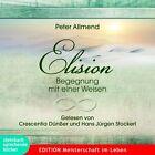 Elision von Peter Allmend (2013)