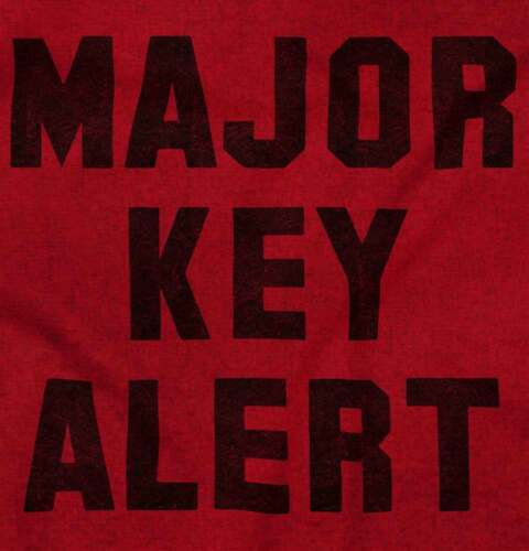 Major Key Alert DJ Khaled Cool Shirt Music Funny Sarcastic Hooded Sweatshirt