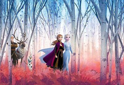 environ 254.00 cm Disney Papier Peint 144 x 100 in Photo Wall Decor Princesse Cendrillon pour enfants
