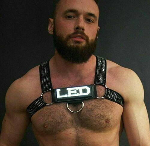 BREEDWELL Stud Harness BILLBOARD CENTER Easy Programmable on LED Screen Silver