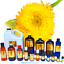 3ml-Essential-Oils-Many-Different-Oils-To-Choose-From-Buy-3-Get-1-Free thumbnail 51