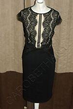Brand New Phase Eight / 8 Ivana Lace dress Size 12