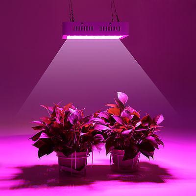 1000W LED Continuous Full Spectrum Chip Grow Light for Plant flower NewGeneratio