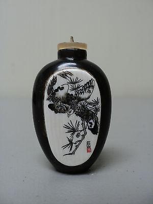 19th. C Chinesisch Natur Horn Schnupftabak Flasche Eingraviertes Keine Kostenlosen Kosten Zu Irgendeinem Preis