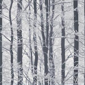 Arthouse Givre Bois Foret Motif Arbres Hiver Paillete Papier Peint