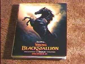 YOUNG-BLACK-STALLION-PRESS-KIT-W-6-PHOTOS-VINTAGE-HORSE