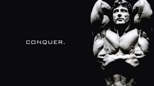 "Great Muscle Player GYM 24/""x14/"" Poster 003 Frank Zane"