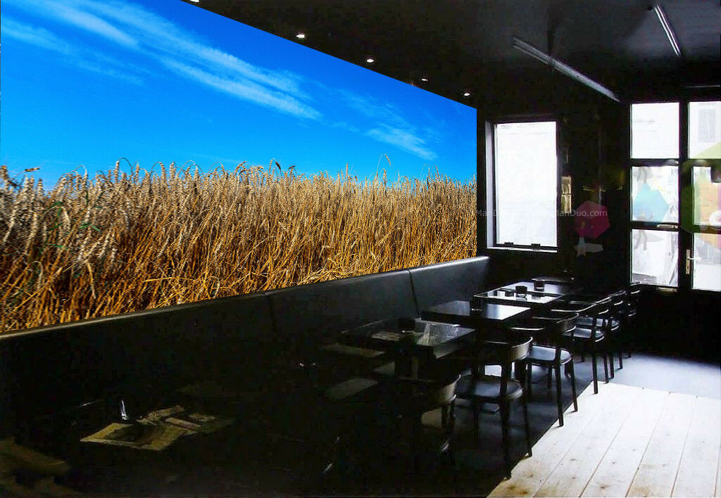 3D Wheat Field Sky 562 Wall Paper Wall Print Decal Wall Deco Indoor Mural Carly