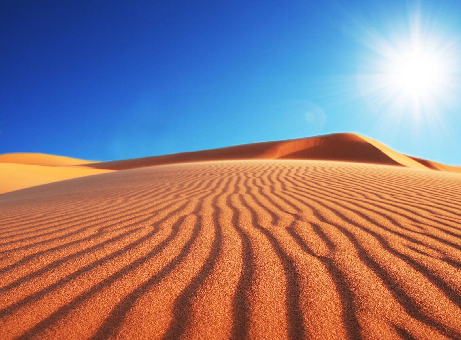 VLIES Fototapete-WÜSTE DÜNE-(318V)-350x260cm-7 Bahnen 50x260-Afrika Beach Sonne