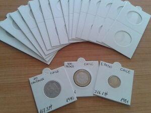 2000 Cartones Grapar + 100 Hojas  para 20 cartones cada una.+ 2 Albumes 27x33