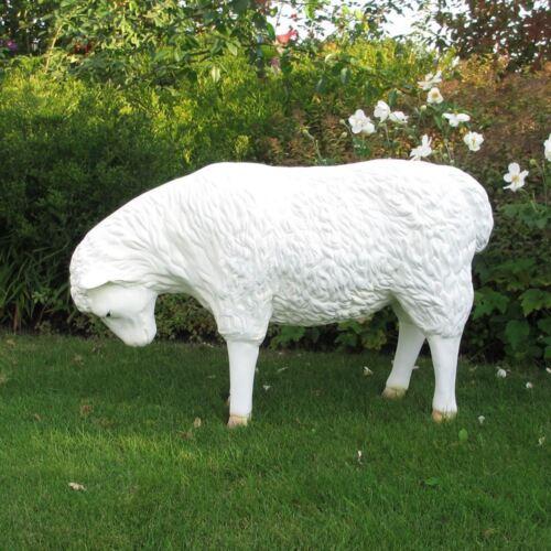 SCHAF KOPF unten grasend weiß PATINA 85 cm Garten Deko Tier Figur Skulptur Sheep
