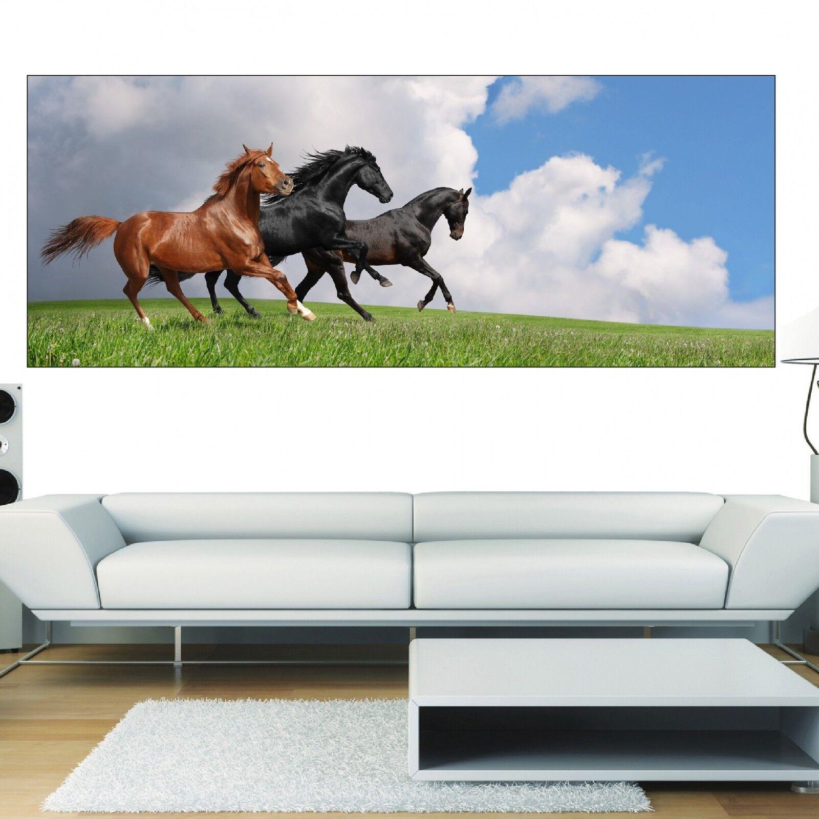 Papel pintado panorámica caballos 3635 Arte decoración Pegatinas
