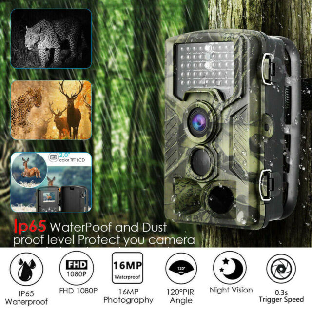 16 MP 1080P Hunting Trail Camera Infrared Security Night Version Waterproof Cam
