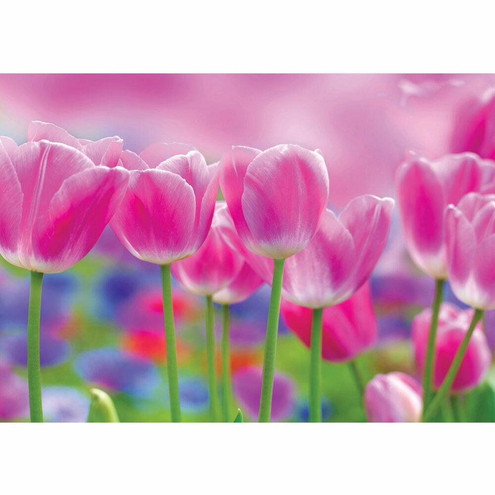 Foto Mural Tulipanes Natural Liwwing N°3562