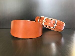Large-Leather-Dog-Collar-Lurcher-Greyhound-Whippet-Saluki-TAN-extra-hard