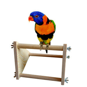 Image Is Loading Parrot Bird Perch Stand Play Fun Toys Gym