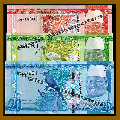 Lot 5 PCS UNC /> New Re-designed note 2015 P-33 New Gambia 20 Dalasis