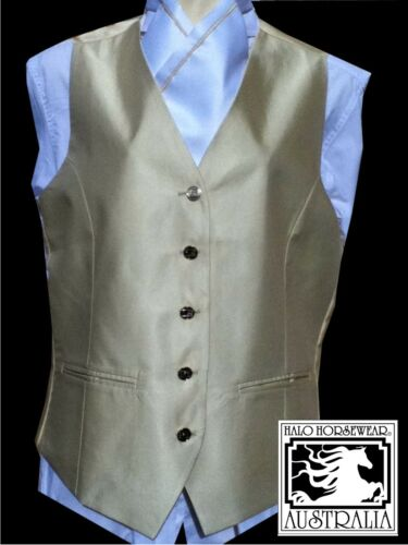 Adult Show Riding Vest with matching pretied stock Size XL
