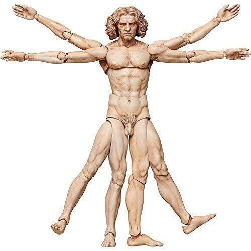 Figma SP-075 The Table Museum Vitruvian Man Action Figure FREEing Japan new .