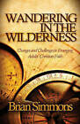 Wandering in the Wilderness: Changes and Challenges to Emerging Adults' Christian Faith by Brian Simmons (Paperback / softback, 2011)