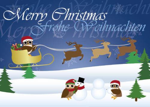 12 Postkarten Weihnachtskarte Eulen Mix Weihnachten Eule Weihnachtspost DIN A6