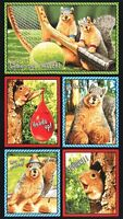 Robert Kaufman Squirrels In Funny Scenes 100% Cotton Fabric By The Panel 24