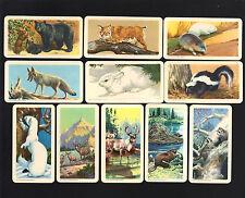 CIGARETTE/TRADE/CARDS.Brooke Bond (Canada).ANIMALS OF NORTH AMERICA.(1960).(Set)